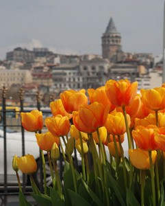 1ok_laleler_istanbul_hbr_ft3_20120419_113640