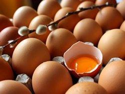 Yumurtayı kullanırken yıkayın