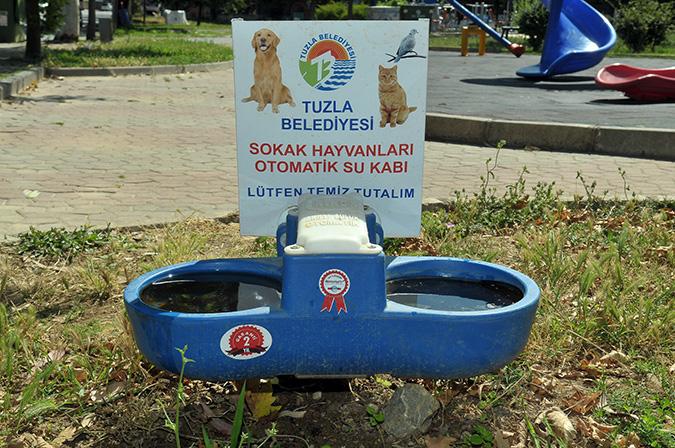 Tuzla'da Sokak Hayvanları Susuz Kalmıyor